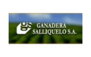 GANADERA SALLIQUELÓ
